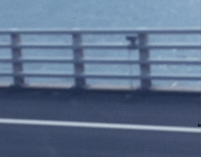 SHORT FILM — [ FRANZ ]