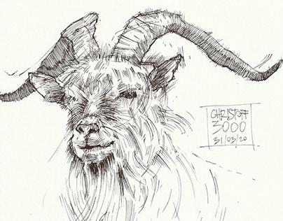 Herd Immunity #2 - Ink Drawing