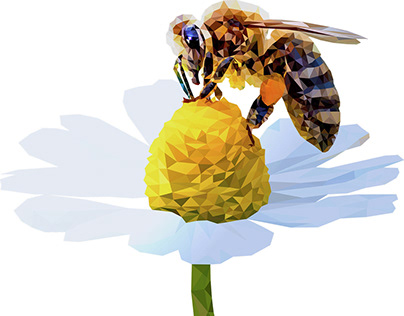 Low Poly Bee   BeeBlink Agency