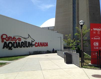 2018 June Ripley's Aquarium of Canada, Toronto, Ontario