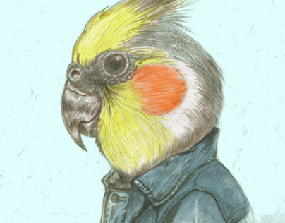 Poster Totoy punk cockatoo