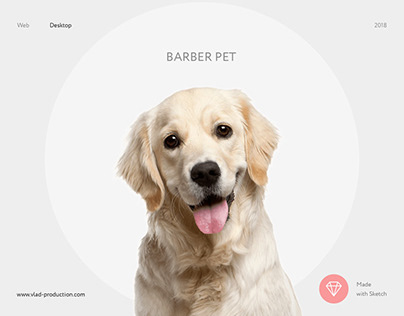 BarberPet