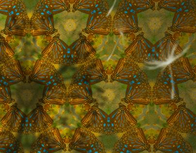 Kaleidoscope of Life (Animated Art)
