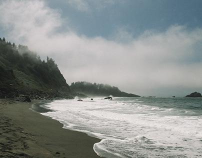 West Coast 2016