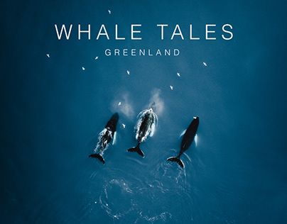 Whale Tales // Greenland