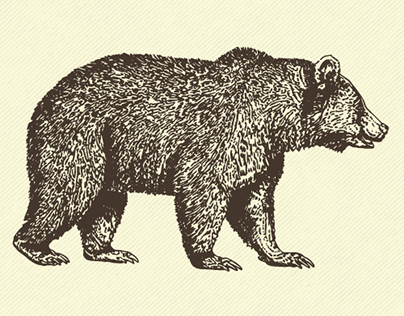 [Vintage Grizzly Bear] Vector