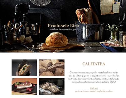 Bizo Website Concept