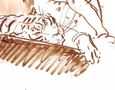 Life & Gesture Sketches