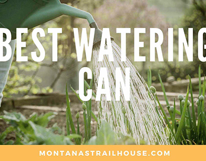 10 Best Watering Can Reviews in 2021 You Should Buy