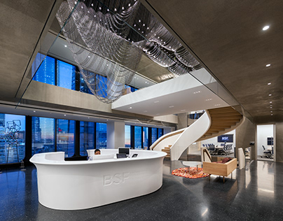 BSF Offices, New York City, Schiller Projects
