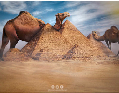 The giant camel