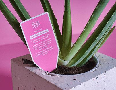 Client Xmas Gift 2019 - Aloe Vera