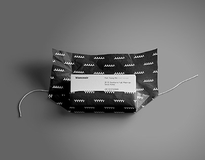 Blancnoir Brand Identity Design Sheet 1