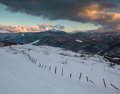 Towards Scalucchia