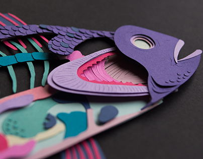 Cross Section | Paper Craft