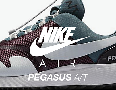 Air Pegasus A/T Winter