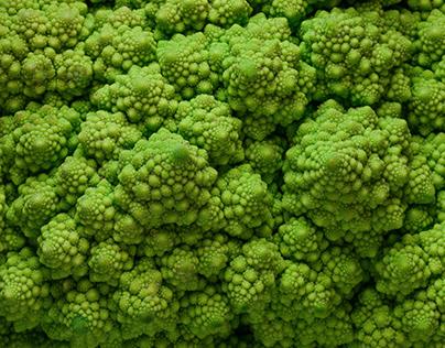 Green Illusion
