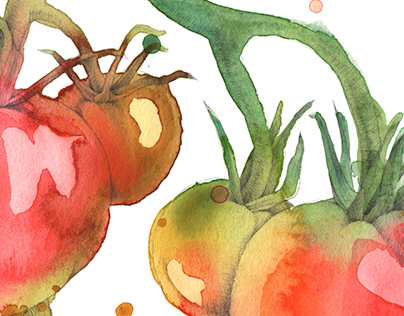 Mrs Gills organic fruit and veg