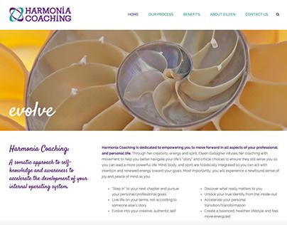 Logo design and WordPress website design & development