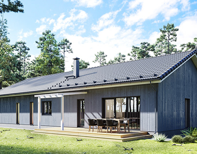Finnish Houses Visualization Series. House №11.