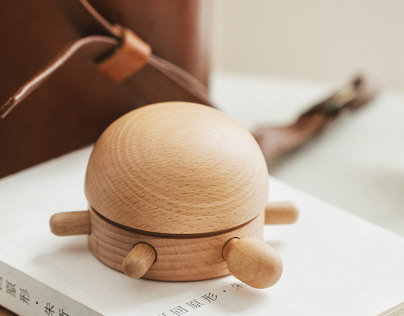 little turtle music box