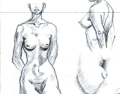 Anatomy Studies (Figure)