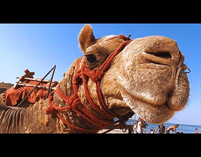 GOKARNA BEACH TREK & CAMPING | Get Beyond Limits