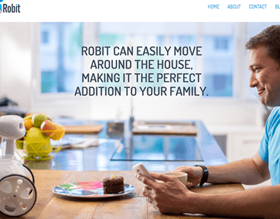Robit website (2015)