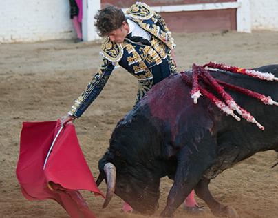 Torros Sahagun, España, Bullfighting in Spain, Sahagun