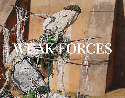 Weak Forces