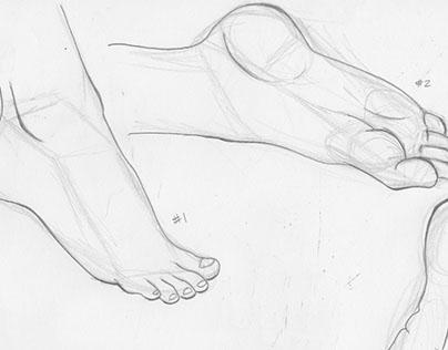 Study of Feet