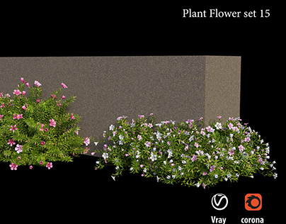 Plant flower set 15