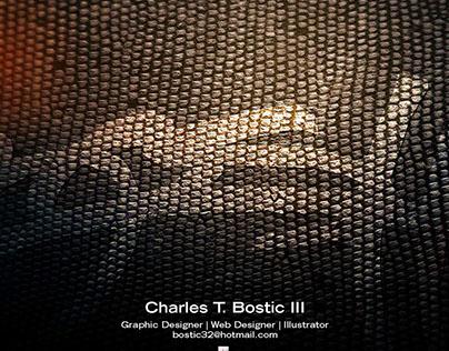 Portfolio of Charles T Bostic