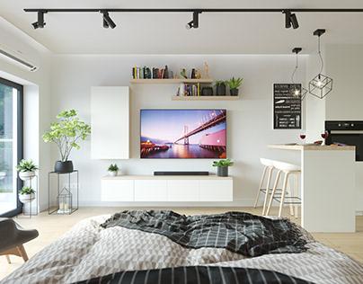 Small Apartment 32m2 CGi