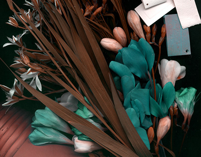 Flora scanography II