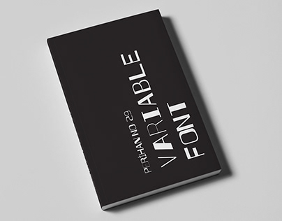 Perihan No:29 | Flipbook Type Specimen |Variable Font|