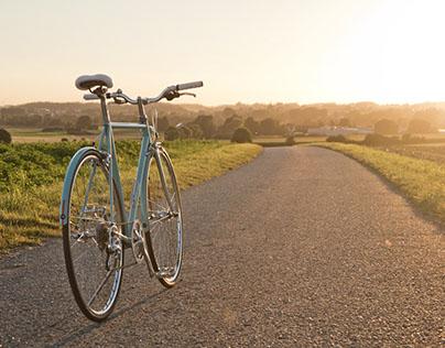 Einhorn | Bike Restoration