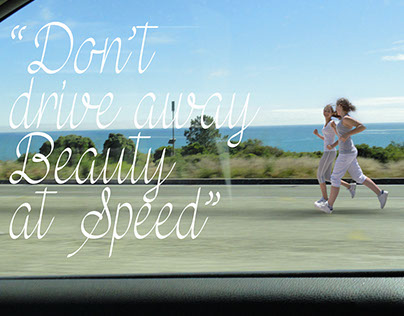 Don't drive away beauty at speed - Drive Slow