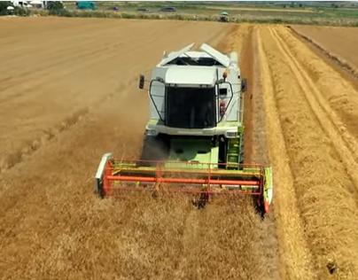 Amstel True Harvest