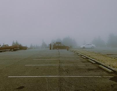 An Airplane Wreck & Foggy Poem