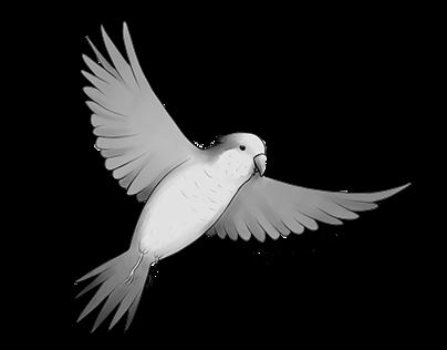Diseños para estampados (Pájaros y Plantas de BsAs)