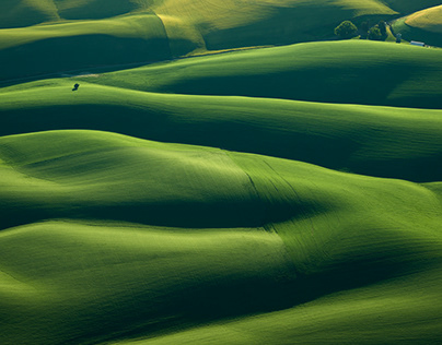 Project #10 The Palouse