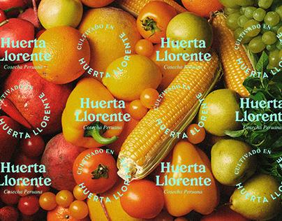 Huerta LLorente Rebranding