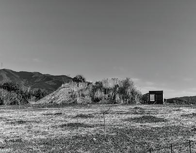 February (Black and White)