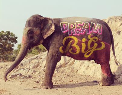 Type on Elephant- #IndiaThroughType