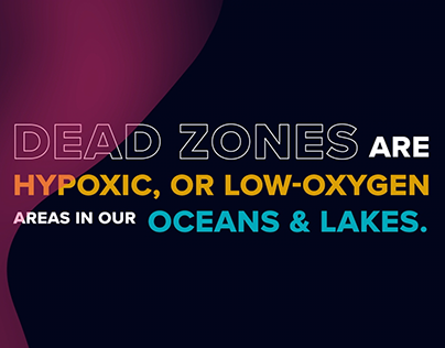 Dead Zones Animated Infographic