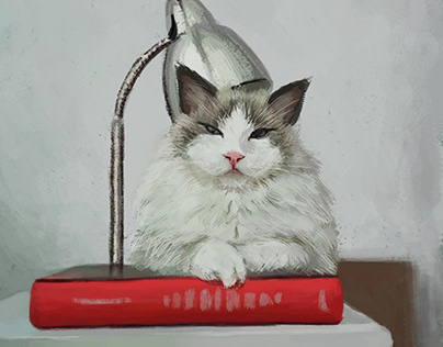 The Cat And The Book