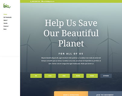 Nonprofit organization webstie