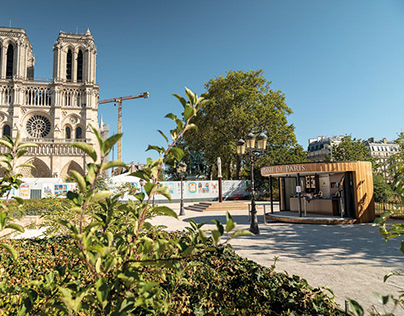 Notre-Dame - WoodPod