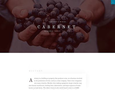 Landing page for wineries!